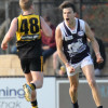 2015 Wk 3 Finals- Hoppers Crossing v Werribee Districts (SNRS)