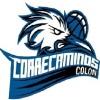 CORRECAMINOS DE COLON