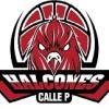 HALCONES DE CALLE P
