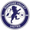 Diamond Valley United SC  Logo