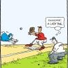 Softball Cartoons