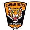CAMDEN TIGERS UNDER 6 WHITE Logo