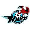 Hawkesbury City FC Logo