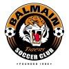 Balmain Tigers FC Logo