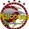 HALCONES DE SONZACATE