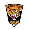 Camden Tigers Logo