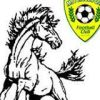 Mitchelton Mustangs Logo