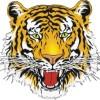 Seaford Logo