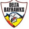 Delta Bayhawks Logo