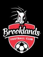 Brooklands FC -Prem