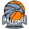 HALCONES DE OBREGON
