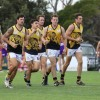2016 Round 1 - Altona v Werribee Districts
