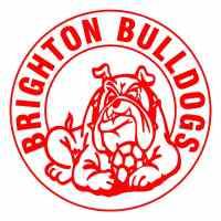 Brighton Bulldogs Green U15 Div 5 Silver
