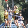 2016 Round 4 - Werribee Districts v Albion RESERVES