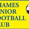 Thames Tigers 11 Logo