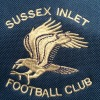 Sussex Seahawks Blue Logo