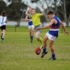 2016 Junior Interleague Under 14A