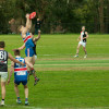 2016 Round 16 Vs North Ringwood (Seniors)