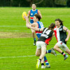 2016 Round 16 Vs North Ringwood (U19's)