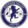 Diamond Valley United SC  Logo