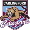 Carlingford Cougars Logo