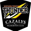 NT Thunder Logo
