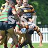 S G BALL C TRIAL vs BALMAIN JAN 28