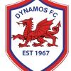 Bunbury Dynamos SC Logo