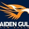 Maiden Gully YCW Eagles Logo