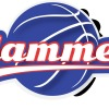 South West Slammers Logo