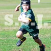 UNDER 7 DIV 1  A 17 MAY ALEX ROVERS vs BOTANY (G)