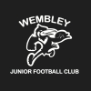 Y4 - Wembley White Logo