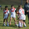 u7 vs Hurstville 13th May 2017