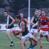 2017 AFLNEB Junior Carnival Wang Green vs Albury Red