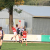 2017 AFLNEB Junior Carnival Albury Red vs Albury Black Final