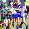 UNDER 8 C 2 1MAY COOGEE DOLPHINS vs MAROUBRA (B)