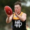 2017 - Round 7 - Deer Park v Werribee Districts