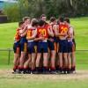 2017 - Round 7 - Yarraville Seddon Eagles v Wyndham Suns