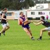 2017 - Round 7 - Altona v Newport Power