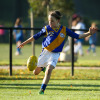 2017 - Round 8 - Flemington Juniors v Williamstown Juniors