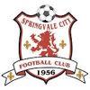 Springvale City SC Red Logo