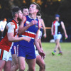 2017 Round 11 - Vs North Ringwood (Seniors)