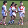 u7 vs Kogarah and Renown 15th July 2017