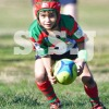 UNDER 6 DIV 1 G  COOGEE RAND (G) vs MAROUBRA (R) 16July