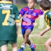 UNDER 7 DIV 1 F S BOTANY (G) vs ALEXROVERS 16Jul7