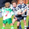 UNDER 6 DIV 1 J SF 3 vs 4 22 July COOGEE RAND (G) vs LA PEROUSE