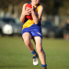 2017 Junior Grand Final - Williamstown Juniors v Werribee Centrals
