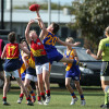 2017 Junior Grand Final - Williamstown Juniors v Yarraville Seddon Eagles