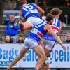2017 Seniors Qualifying Final - Vs Balwyn
