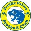 PP Cheetahs - GL6 Logo